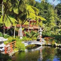 Mostek, pagoda i... ciągle jestem na Maderze. Monte Ogród Tropikalny