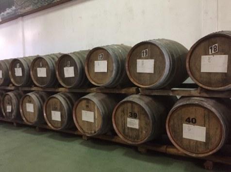 Żywe muzeum wina w Madalenie, czyli degustacja w kooperatywie Picowines