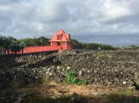 Muzuem wina, czyli dawny klasztor i jego pola